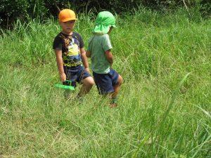 稲刈り7(年中)